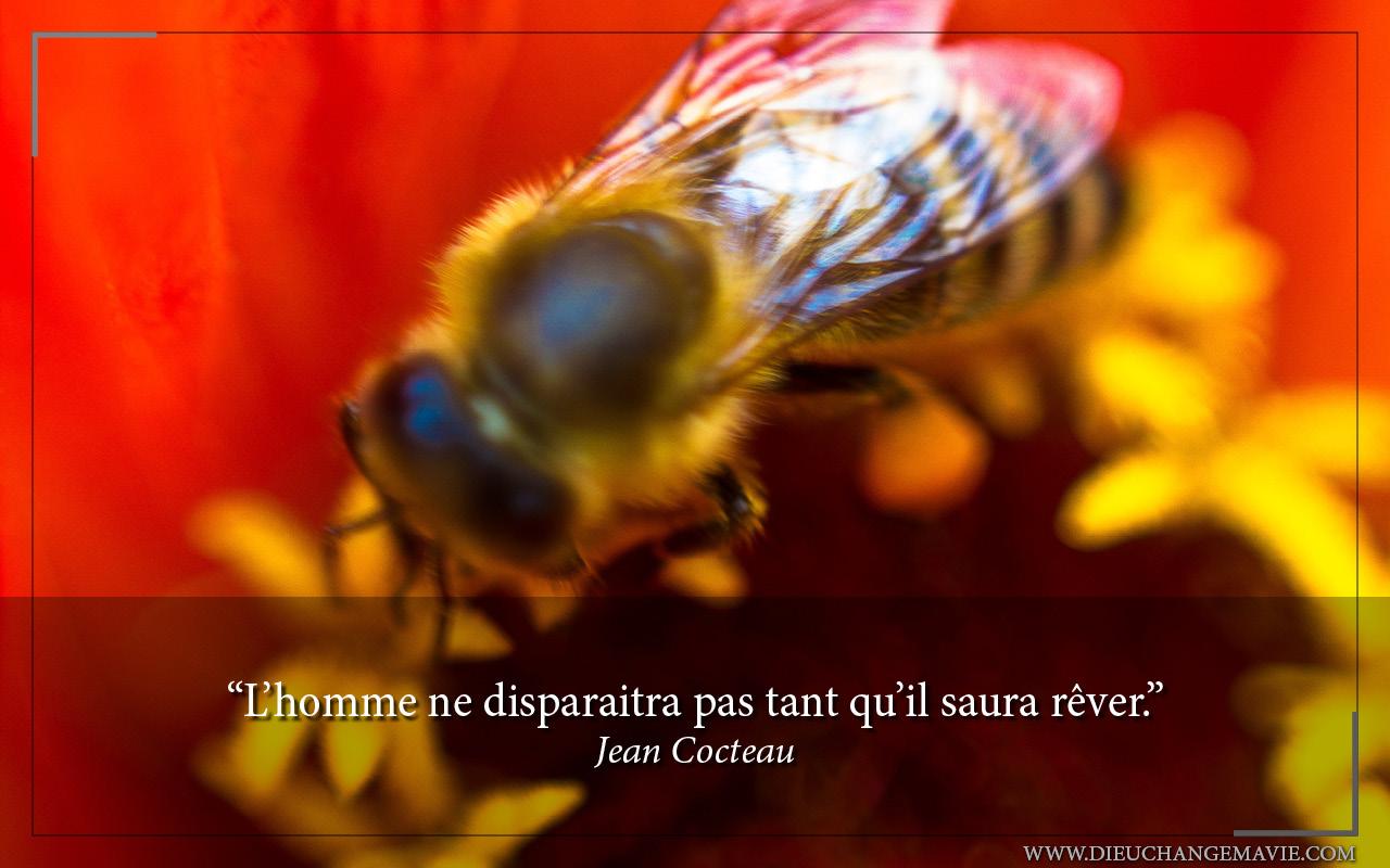 disparaitra-tant-saura-rever-jean-cocteau-223